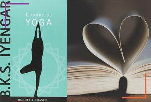 Lecture : L'arbre du yoga
